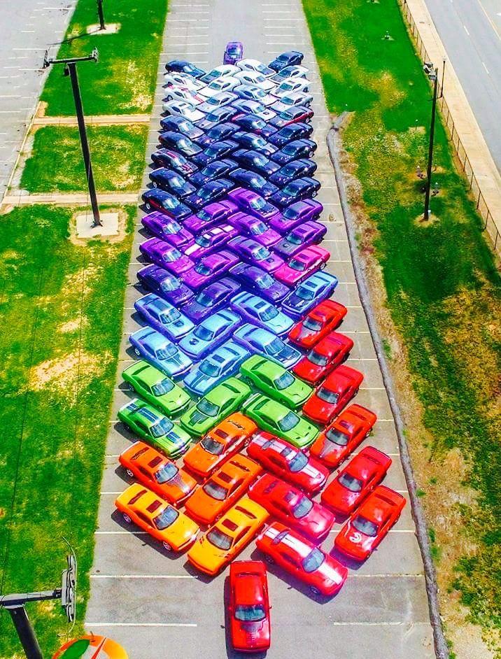 Fantastic Rainbow Cars. ❤