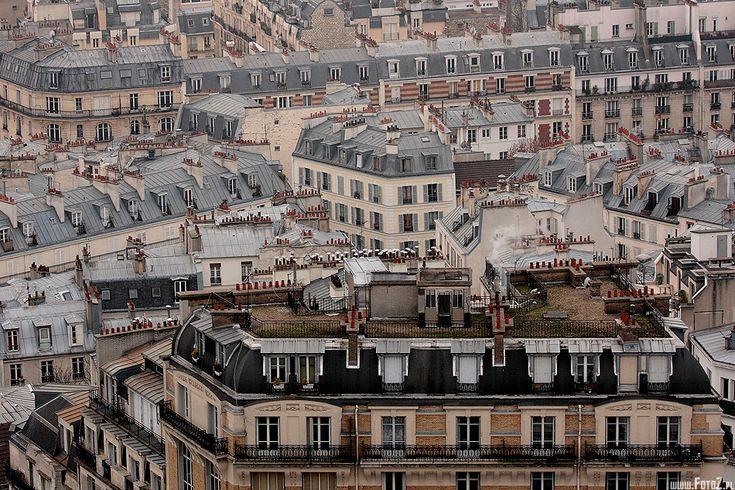 Taras na dachu - trawnik na dachu budynku