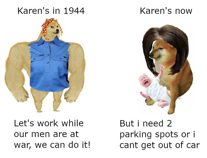 Then Now Dog Meme Funny Memes Karen Memes Stupid Funny Memes