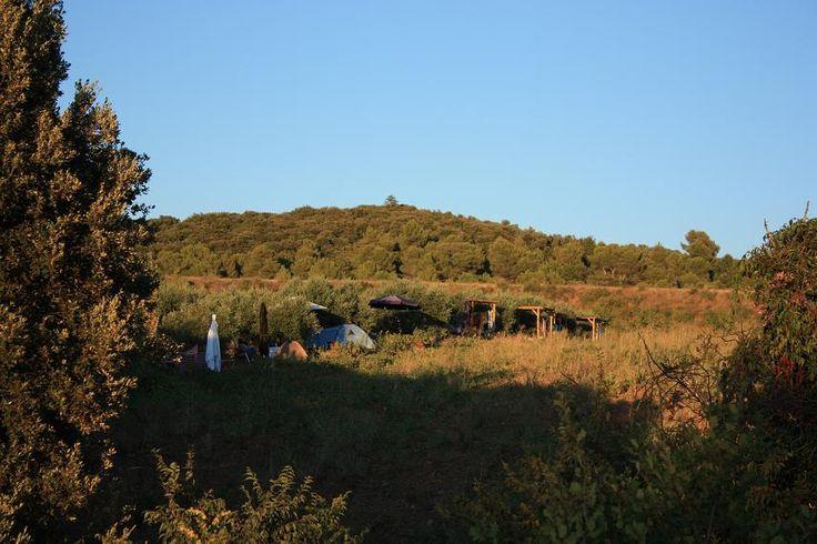 Eco-camping Les Olivettes - Les Mées - France
