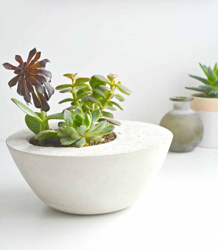 Best concrete molds for upcycling