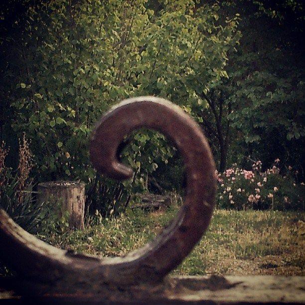 Dietro il cancello, Albera, luglio 2013 http://visionipoetiche.com/2013/08/03/donatemi-una-carezza-donatemi-il-silenzio-grant-me-a-caress-grant-me-the-silence/