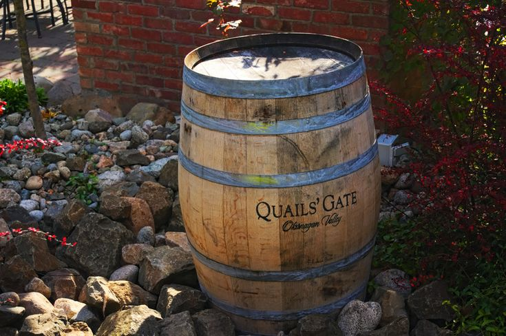I love wine - this cool barrel was found at Quail's Gate Winery in Kelowna, BC.