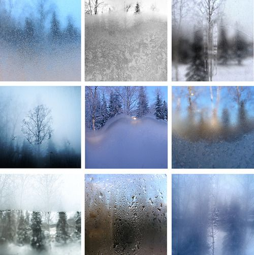 Typology of scenes viewed from a  bedroom window in Alaska. Photography by Mark Meyer.