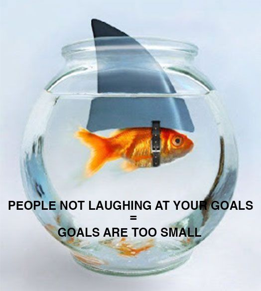 People not laughing at your goals = goals are too small