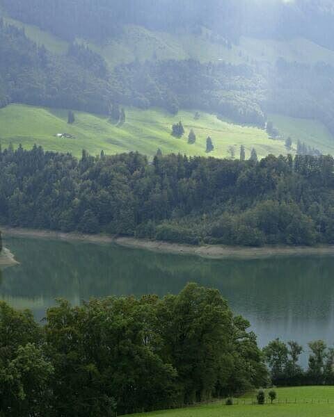 Geweldig fijn licht hier vandaag in Centraal-Zwitserland.  #photography #travelphotography #traveller #canonnederland #canon_photos #fotocursus #fotoreis #travelblog #reizen #reisjournalist #travelwriter#fotoworkshop #willemlaros.nl #reisfotografie #moto73 #suzuki #v-strom #MySuzuki #motorbike #motorfiets  #myswitzerland #zwitserland #grandtour #lenk #simmental #fribourgregion #fb #tw
