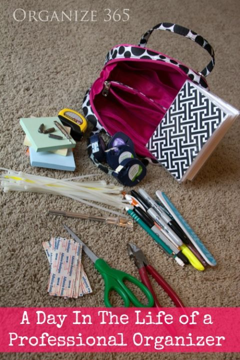 Professional Organizer Work Bag