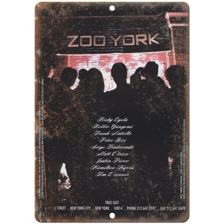 "90s Zoo York Skateboard Ad True East ad RARE 10"" x 7"" Reproduction Metal Sign"
