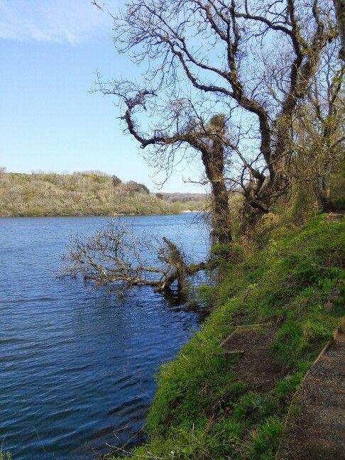 Bosherton Lakes, Pembrokeshire