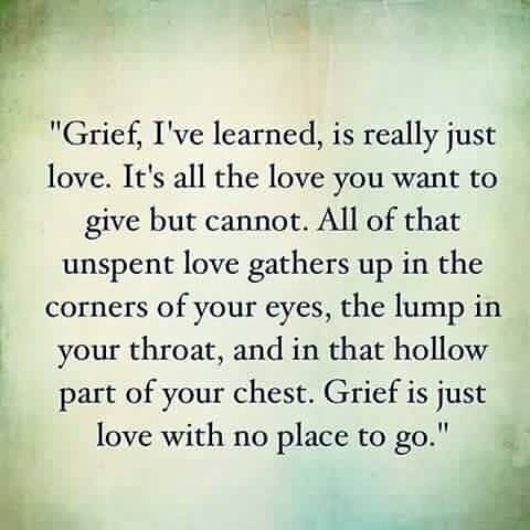 Grief, I've learned, is really love. It's all the love you want to give but cannot give. The more you loved someone, the more you grieve. All of that unspent love gathers up in the corners of your eyes and in that part of your chest that gets empty and hollow feeling. The happiness of love turns to sadness when unspent. Grief is just love with no place to go. - Jamie from http://allmylooseends.com/2014/03/lights-wink/