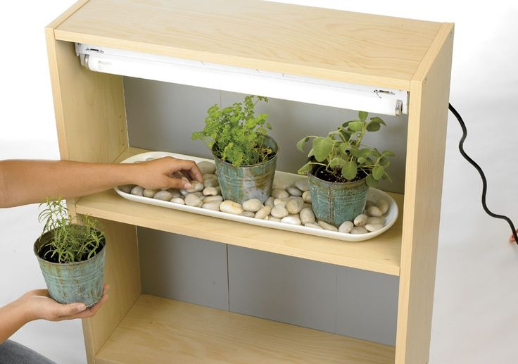 Hack Your Bookcase To Grow Indoor Herbs All Year Shelves
