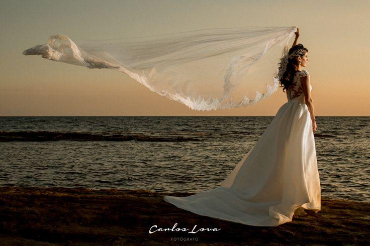 www.carloslova.com