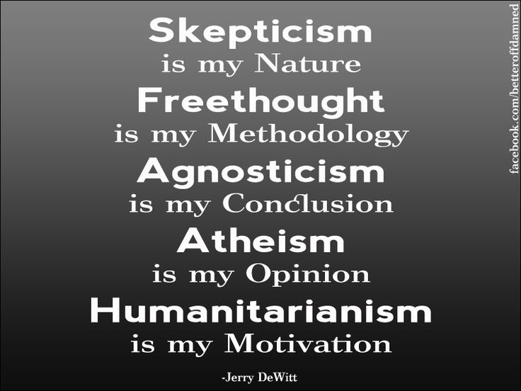Skepticism is my nature. Freethought is my methodology. Agnosticism is my conclusion. Atheism is my opinion. Humanitarianism is my motivation.