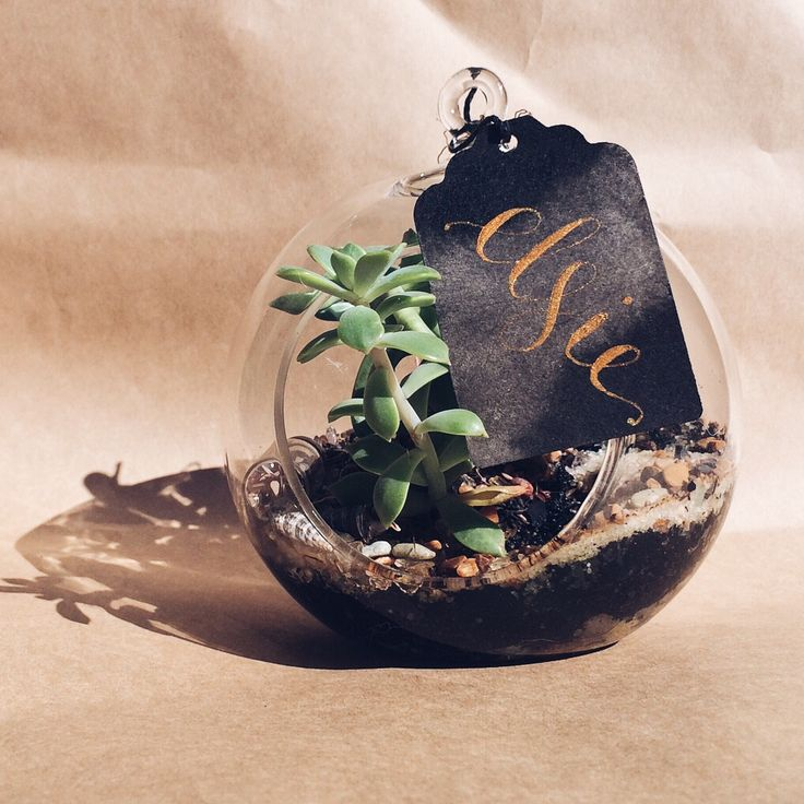 Watercolour name tag with gold ink. How luxe, with the terrarium as a wedding favour.  www.willowandink.com.au