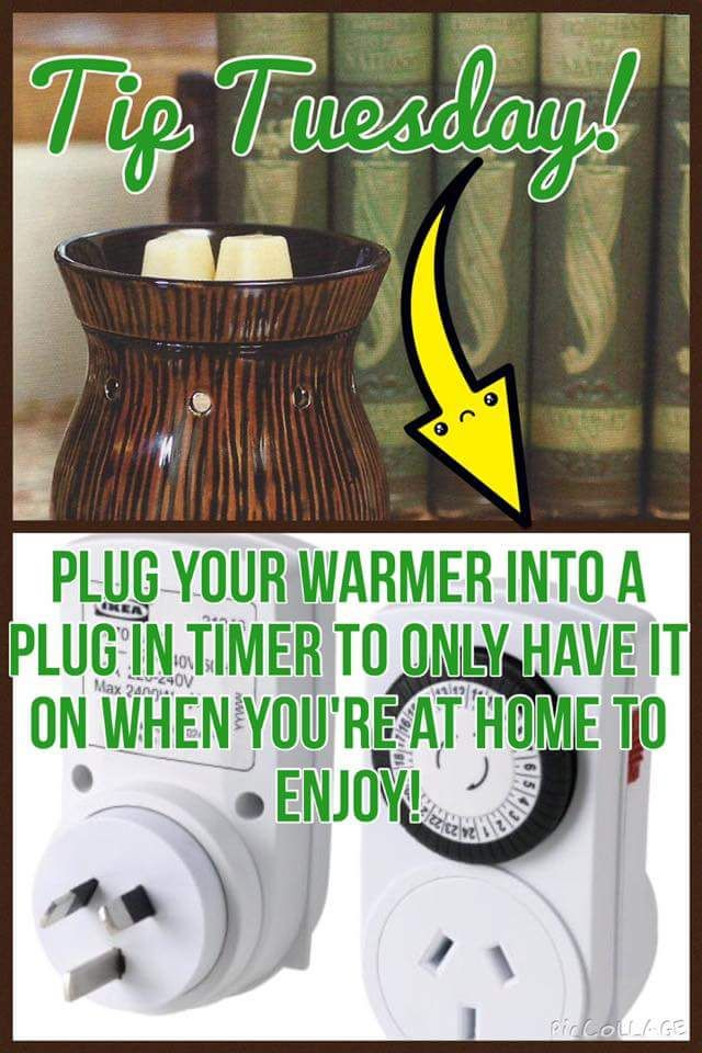 Plug your Scentsy warmer into a plug in timer to have it on when you're home to…