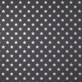 Papier peint Duplex Etoiles Argent / noir