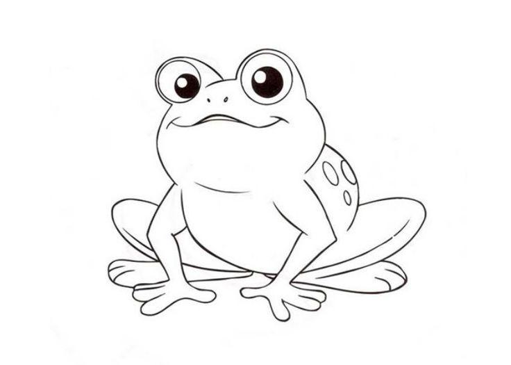 frosch ausmalbild 06
