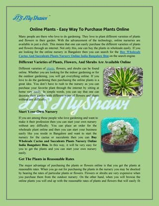 Buy wholesale Cactus And Succulents Plants Nursery Online India Bangalore Btm  Many people are there who love to do gardening. They love to plant different varieties of plants and flowers in their garden. With the advancement of the technology.You can buy online also best plant that you like at the best price.
