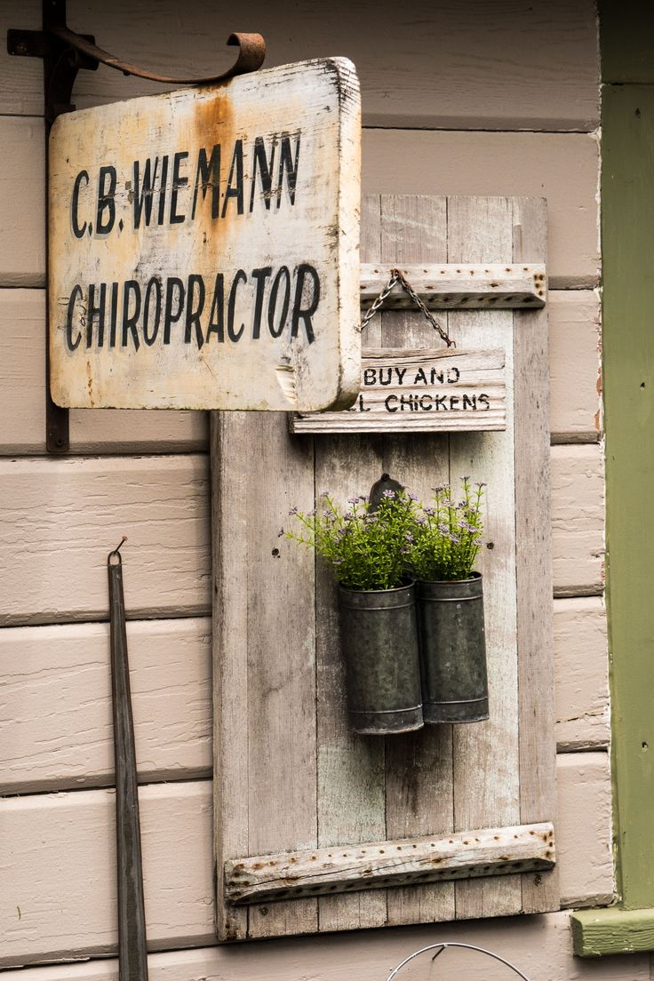 Plant herbs in tin containers mounted on a salvaged shutter or small door.