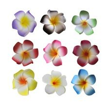 100 pcs, 4 CM cabeça, Multicolor casamento falso Plumeria espuma Artificial EVA pequeno cabeças de flor frangipani, Decorações do partido havaiano(China (Mainland))