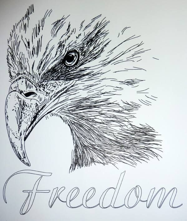 Line Drawing Pencil : Best images about black tribal eagle on pinterest