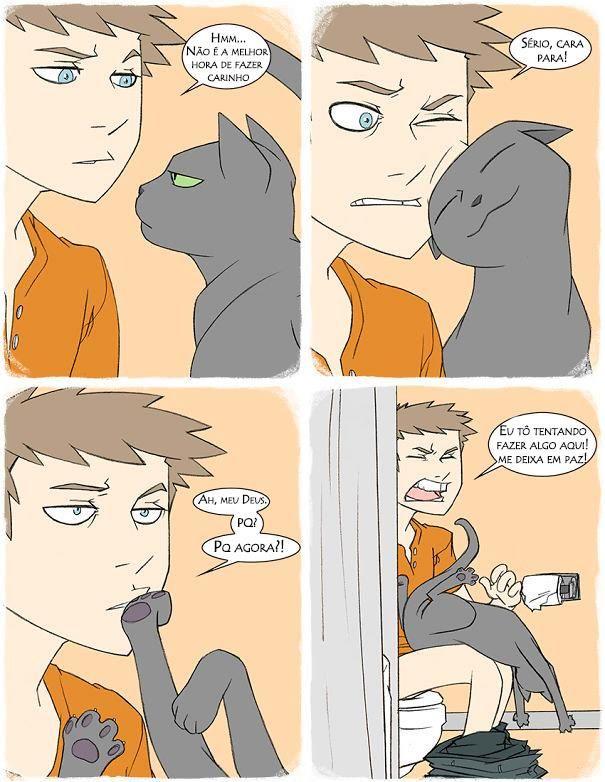 logica-dos-gatos-6