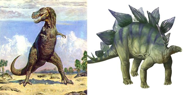 Should we keep going? The difference in time between when Tyrannosaurus Rex and Stegosaurus lived is greater than the difference in time between Tyrannosaurus Rex and now.     Mind. Blown.