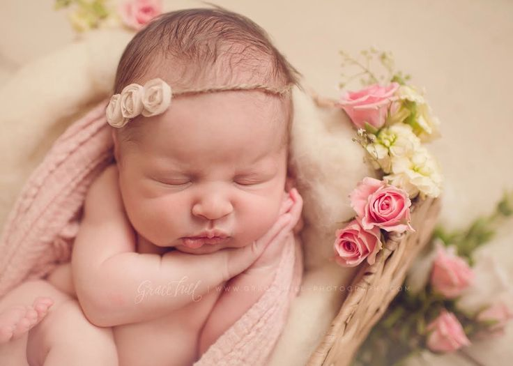 newborn twin picture ideas - 17 Best images about Newborn graphy Ideas on