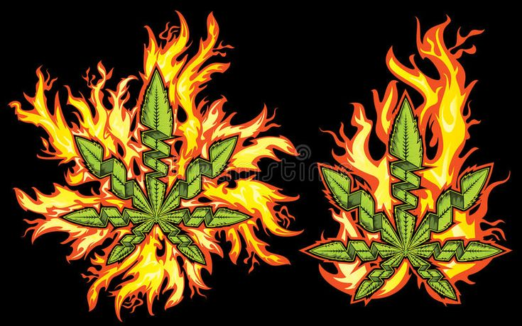 Download Hemp Cannabis Leaf In Wild Fire Flames Stock Illustration - Image: 51964265