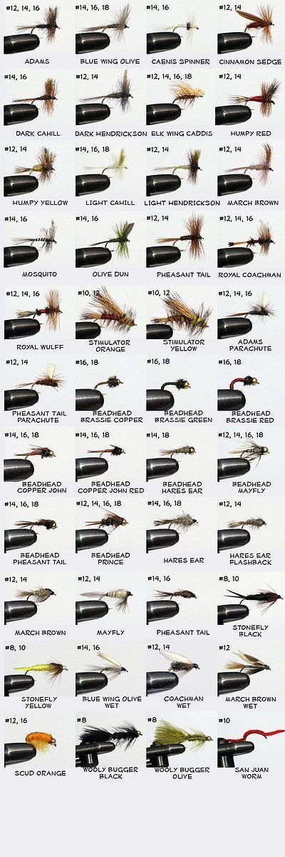 Flies 23812: Barnsley 100 Assorted Dry And Nymph Fly Fishing Flies -> BUY IT NOW ONLY: $71.73 on eBay!
