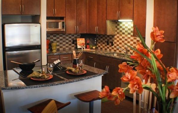 Apartments Design District Dallas Gorgeous Inspiration Design