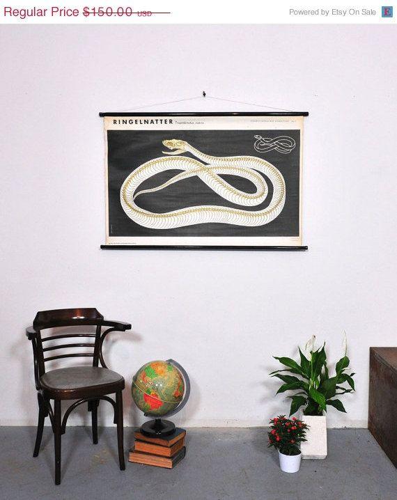 SALE Snake Skeleton Vintage School Chart Grass by Discoverprints
