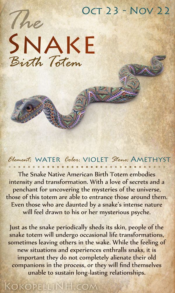 Are you the mysterious snake? Those born from Oct 23 - Nov 22 are represented by this unique birth totem animal.