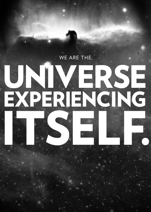 We are the universe experiencing itself.