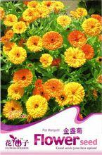 1 Original Pack, 50 Seeds / Pack, Calendula Seeds CALENDULA OFFICINALIS Decorative and Medicinal #A111(China (Mainland))