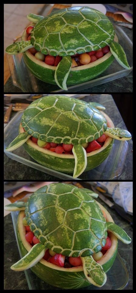 watermelon art | Watermelon Turtle Art | Geekfill