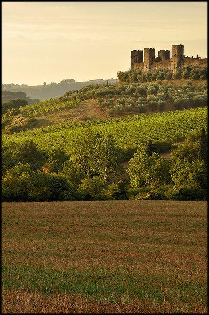 "Primavera #Barilla ""Italia"" por este hermoso campo en Monteriggioni, Tuscany, Italy, Siena"