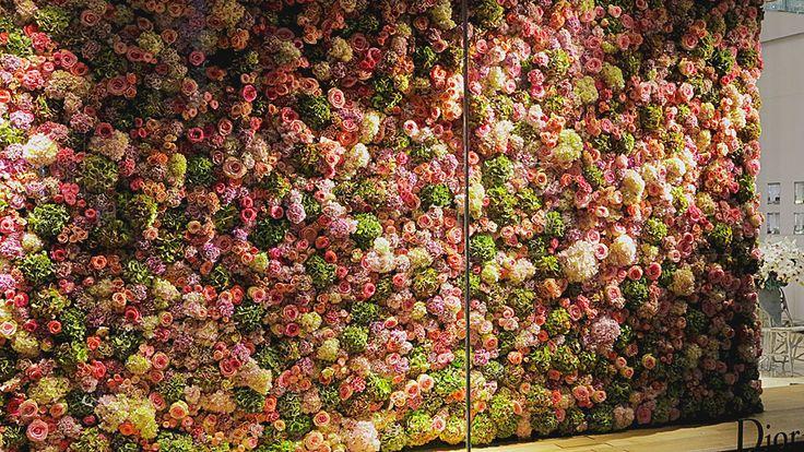 flower wall Dior