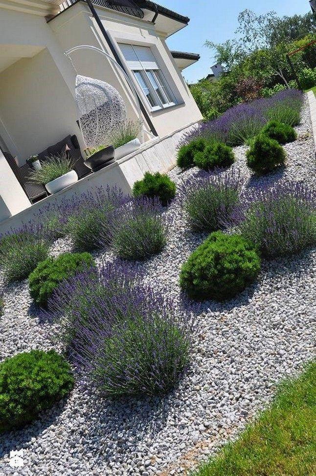 45 Easy And Beautiful Front Yard Landscaping Ideas On A Budget 12 In 2020 Garten Landschaftsbau Vorgarten Garten