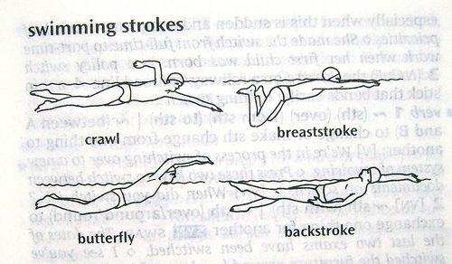 There are four swimming styles: crawl, breaststroke, butterfly and ...