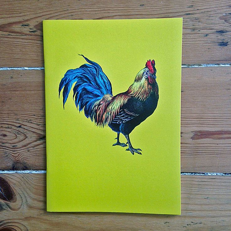Cockerel notebooks