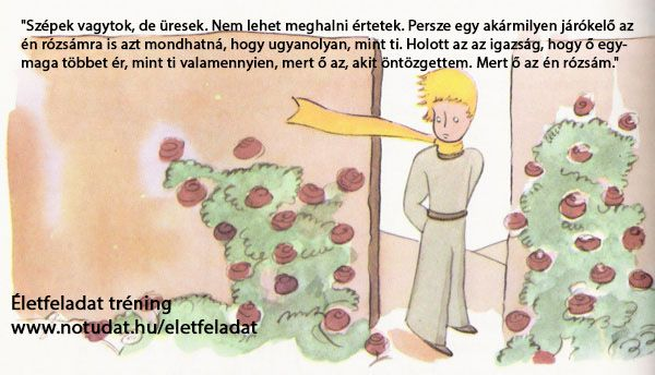 Életfeladat tréning http://www.notudat.hu/eletfeladat