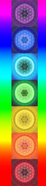 Artprint 7-chakren-farbverlauf by Christine Bässler