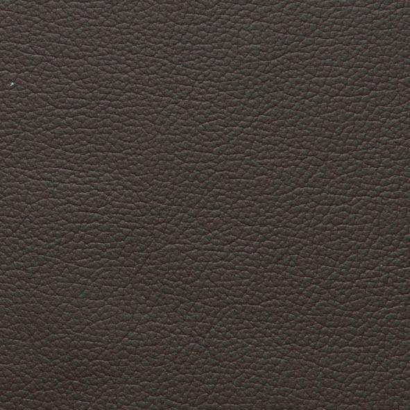 2-Sitzer Ledersofa »sally« mit Metall-Winkelfüßen in Chrom glänzend, Breite 154 cm