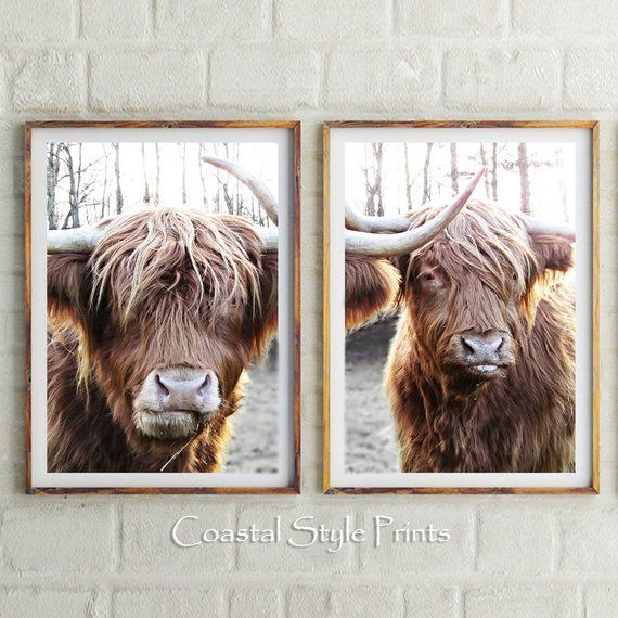 Set Of 2 Highland Cow Printsprintable Artbuffalo Wall Etsy Buffalo Wall Art Highland Cow Print Printable Art
