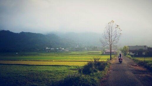 Kalibening, Banjarnegara, Central Java, Indonesia. Photo: Raninda