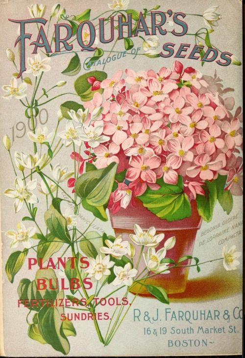 Back cover of 'Farquhar's Seeds, Plants and Bulbs Catalogue', 1900. R & J. Farquhar & Co. 16 & 19 South Market St. Boston. vintage printable