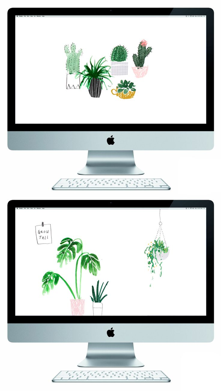 Download this free wallpaper and have plants on your screen to keep you happy