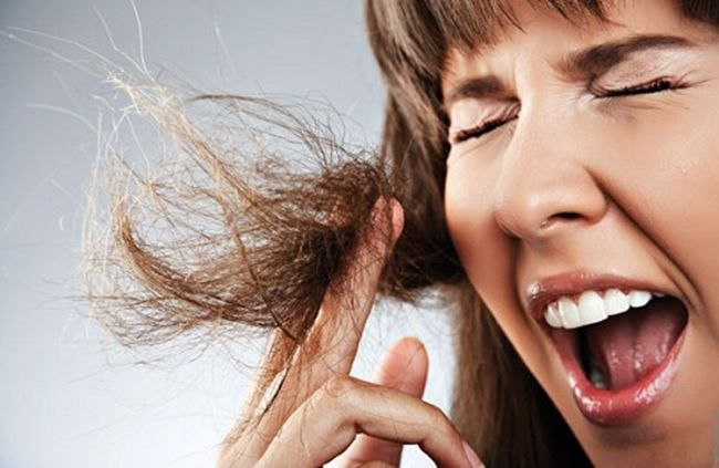 ACABE com PONTAS SECAS e ESPIGADAS com APENAS 3 INGREDIENTES - RESULTADO IMEDIATO | Damaged hair, Burnt hair, Static hair