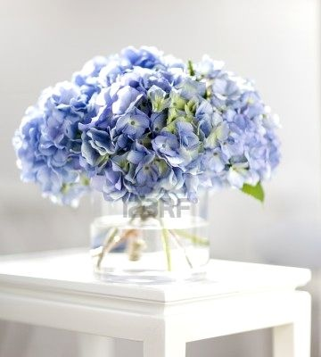 perhaps as a bouquet and for the centerpieces. Simple hydrangea centerpiece adding seashells would be nicer.